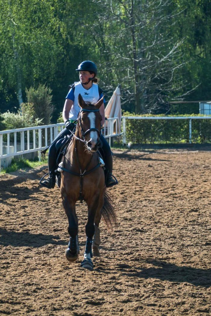 Kůň v Pardubicích - závodiště Pardubice