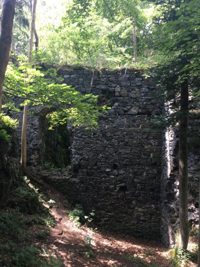 Zřícenina Skála nedaleko Přeštic